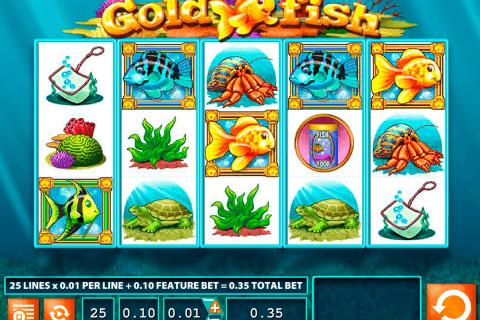 gold fish wms